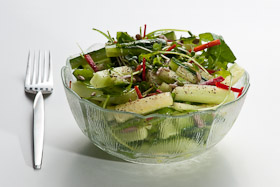 A bowl of salad, with cucumbers in cut into straight sticks, some leaves and green chillies for visual contrast.