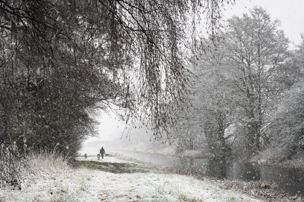 Winter By The Pocklington Canal