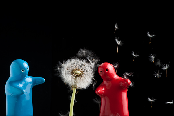 Two figures and a dandelion